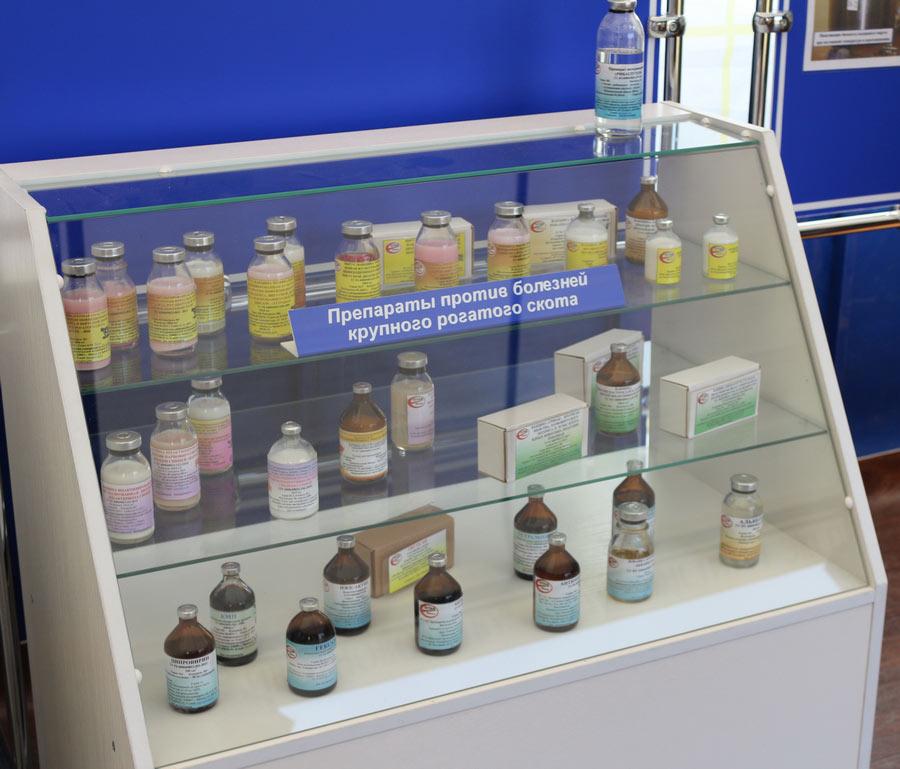 Институт экспериментальной ветеринарии им. С. Н. Вышелесского. Препараты против болезней крупного рогатого скота