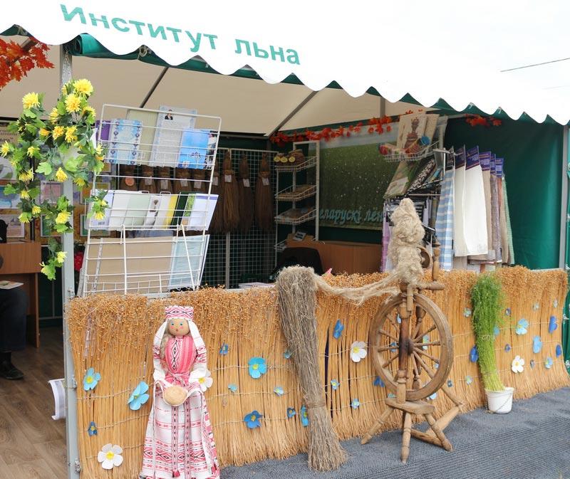 Институт льна на БЕЛАГРО-2014, ОАО Гастелловское, 3-8 июня 2014 г.