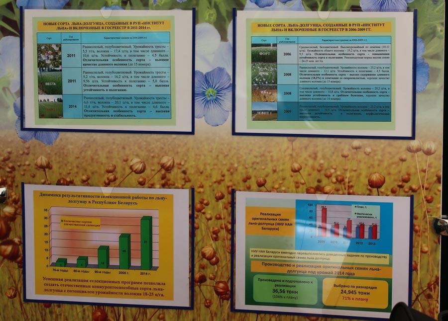Новые сорта льна-долгунца, созданные в Беларуси. Динамика результативности селекционной работы. Реализация оригинальных семян
