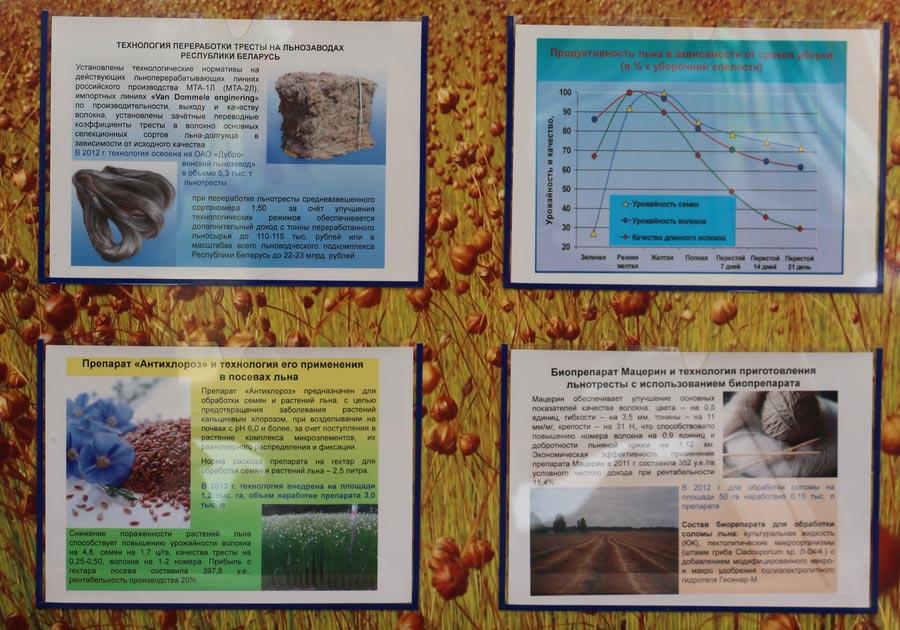 Препарат Антихлороз и его применение в посевах льна. Биопрепарат Мацерин и технология приготовления льнотресты
