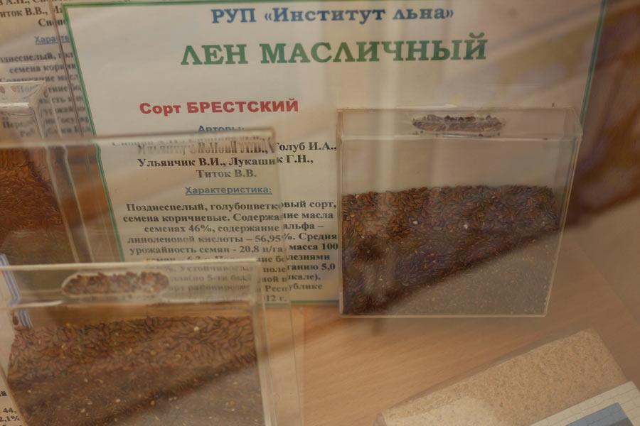 Институт льна. Семена льна масличного. Сорт Брестский