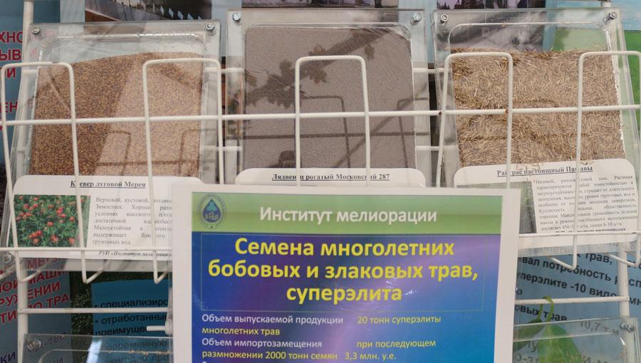 Институт мелиорации. Семена многолетних бобовых и злаковых трав, суперэлита