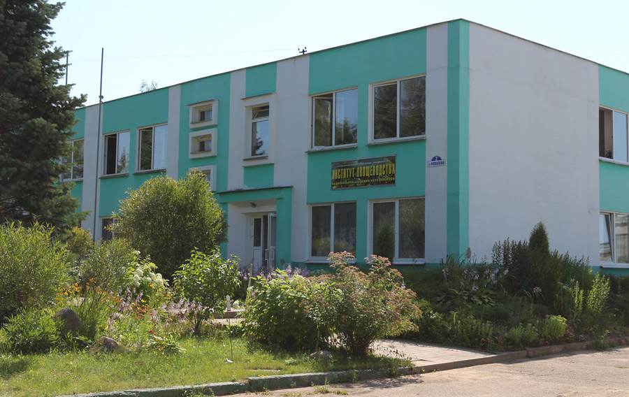 Институт овощеводства, ул. Ковалева, 2, 223013, пос. Самохваловичи, Минский р-н, Беларусь