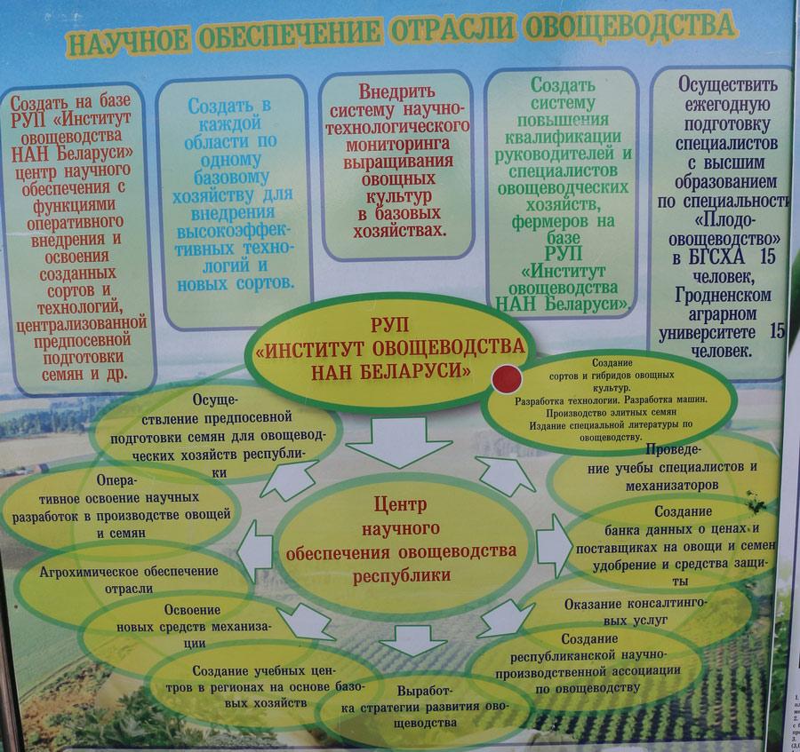 Институт овощеводства на БЕЛАГРО-2016. Научное обеспечение отрасли овощеводства