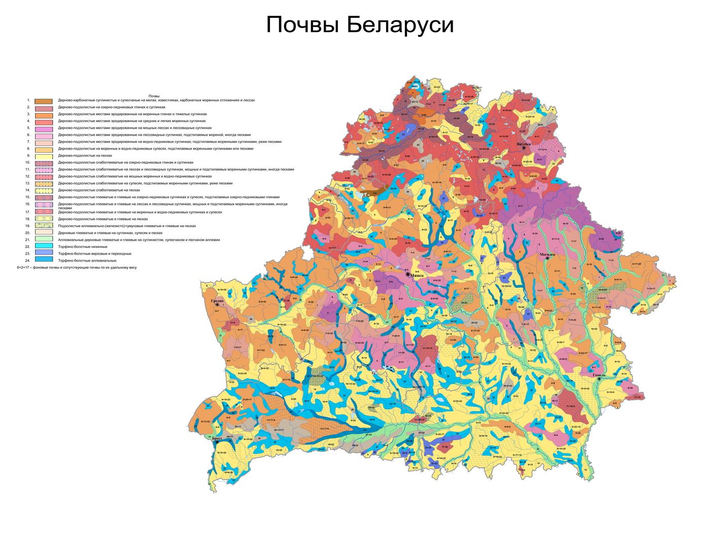 Почвы Беларуси. Почвенная карта, разработанная Институтом почвоведения и агрохимии