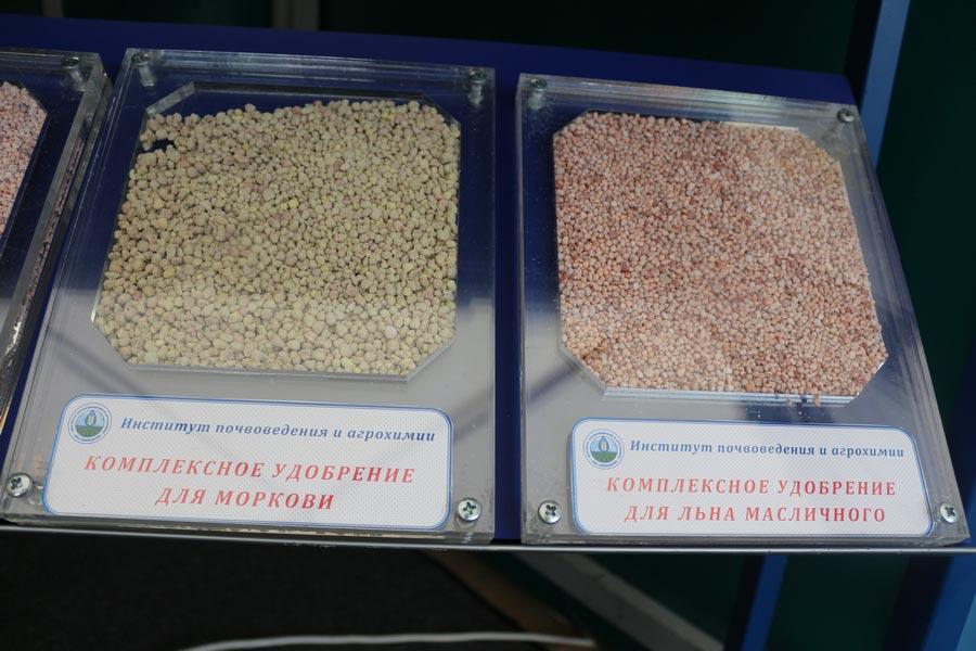 Комплексные удобрения для моркови и льна масличного, разработанные в Институте почвоведения и агрохимии