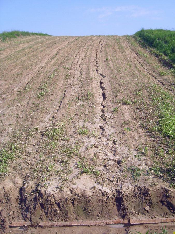 Стоковые площадки для изучения эрозионных процессов. Исследования Института почвоведения и агрохимии