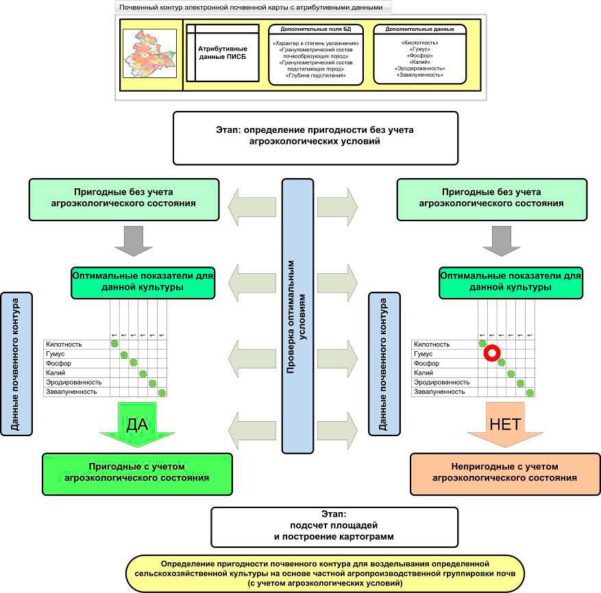 Информационно-логическая схема определения пригодности почвенного  покрова для выращивания отдельных сельскохозяйственных культур. Исследования Института почвоведения и агрохимии