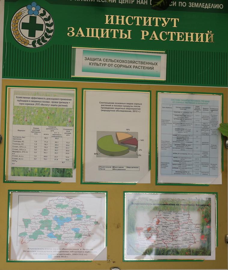 Институт защиты растений. Защита сельскохозяйственных культур от сорных растений