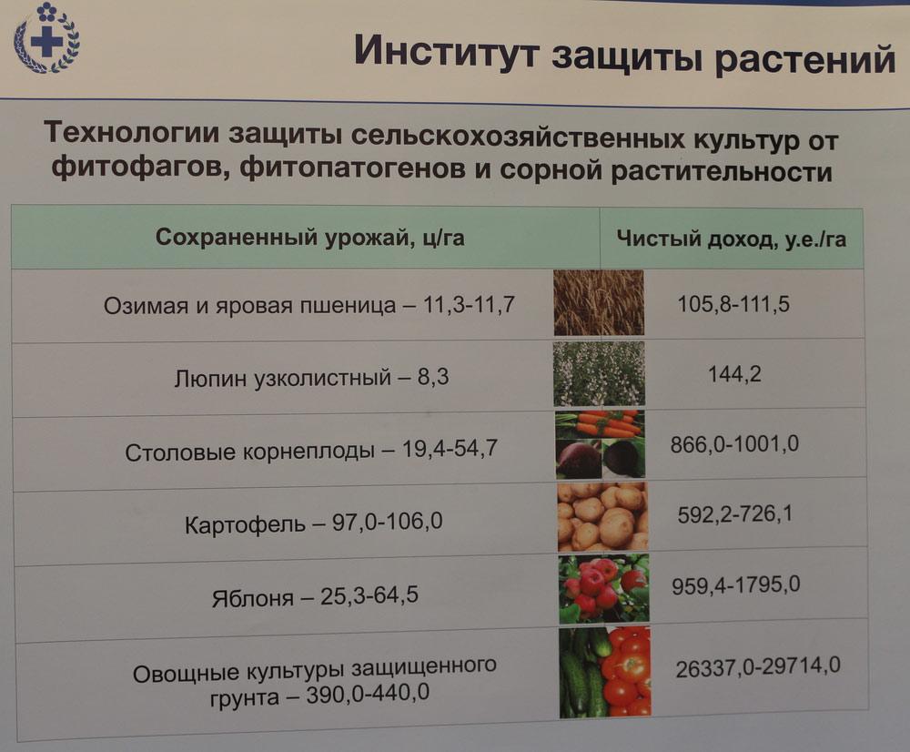 Технологии защиты сельскохозяйственных культур от фитофагов, фитопатогенов и сорной  растительности. Исследования Института защиты растений