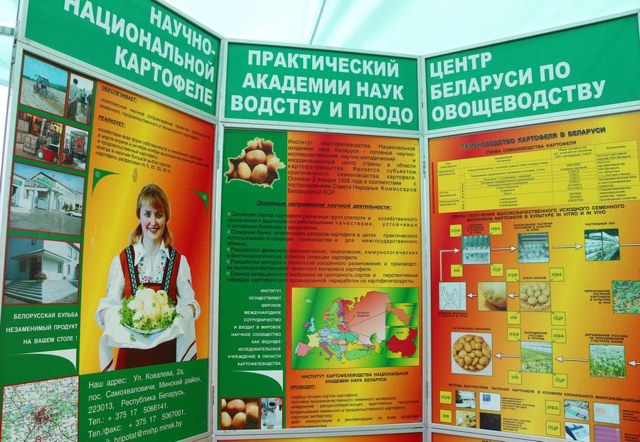 НПЦ по картофелеводству и плодоовощеводству на БЕЛАГРО-2016.