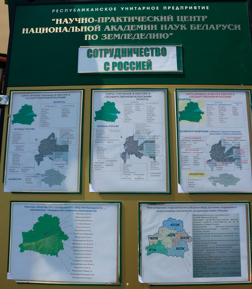 НПЦ НАН Беларуси по земледелию. Сотрудничество с Россией