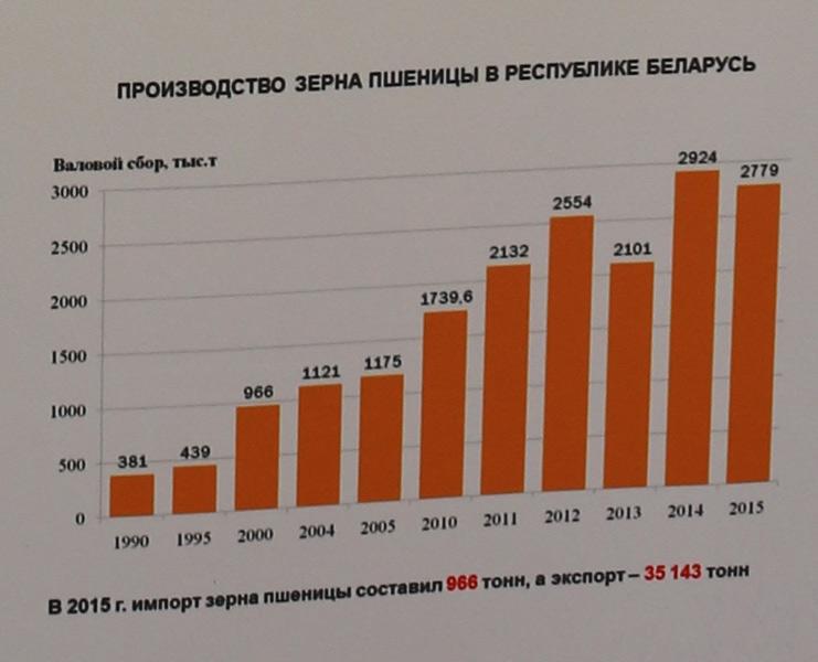 НПЦ НАН Беларуси по земледелию. Производство зерна пшеницы в Беларуси