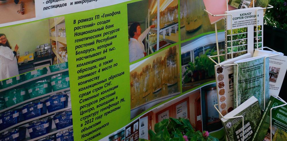 НПЦ НАН Беларуси по земледелию. Национальный банк генетических ресурсов Республики Беларусь