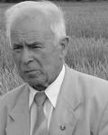 Шевелуха Виктор Степанович. Персональная страница