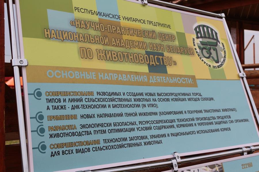 Научно-практический центр НАН Беларуси по животноводству. Основные направления деятельности