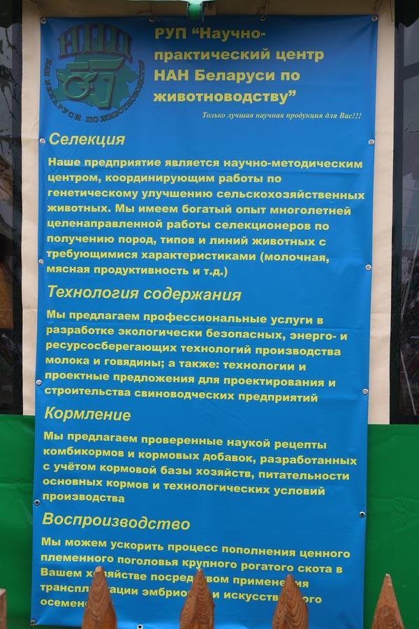 Научно-практический центр НАН Беларуси по животноводству. Основные направления деятельности. Услуги
