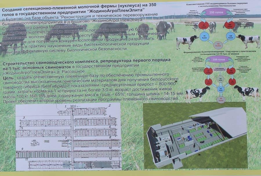 Научно-практический центр НАН Беларуси по животноводству. Инновационные технологии в животноводстве