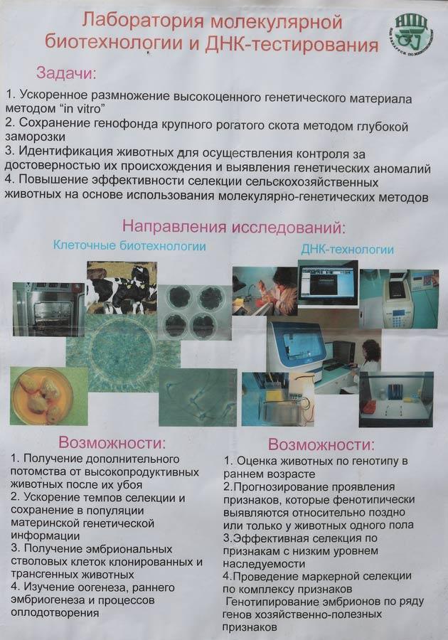 Научно-практический центр НАН Беларуси по животноводству. Лаборатория молекулярной биотехнологии и ДНК-тестирования