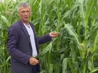 Шиманский Леонид Петрович, директор Полесского института растениеводства