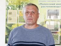Кравцов Виталий Иванович, заместитель директора Полесского института растениеводства