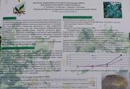 Изучение эффективности нового фунгицида орвего для защиты картофеля от фитофтороза. Стендовый доклад