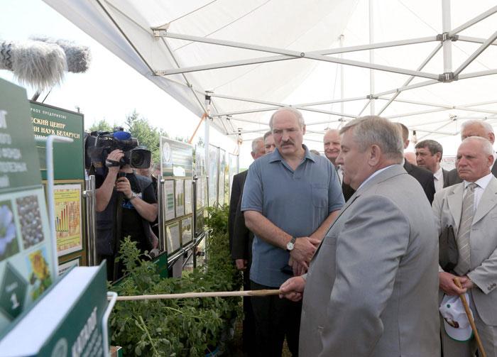 Шипяны-АСК. Привалов Ф.И. презентует результаты работы А.Г. Лукашенко