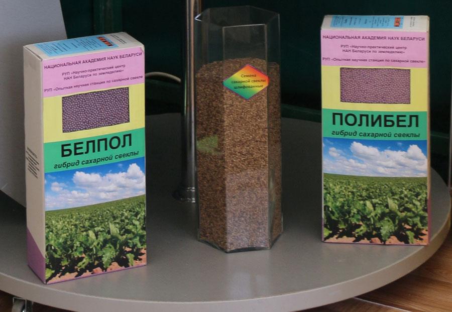 Опытная научная станция по сахарной свекле. Семена гибридов сахарной свеклы Белпол и Полибел