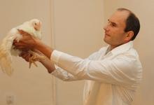 Киселев Александр Иванович, заместитель директора Опытной научной станции по птицеводству