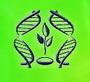 Институт генетики и цитологии НАН Беларуси