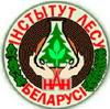 Институт леса НАН Беларуси