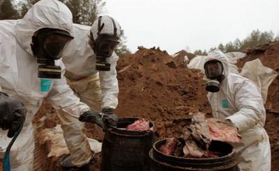 Ликвидация захоронения непригодных пестицидов в Беларуси