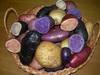 Новый цветной картофель Беларусь