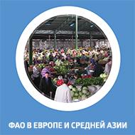 Брошюра (ФАО в Европе и Средней Азии)