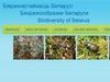 Biodiversity of Belarus