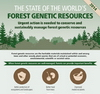 forest genetic resources