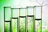 Биопрепараты в растениеводстве