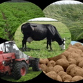 развития аграрного бизнеса